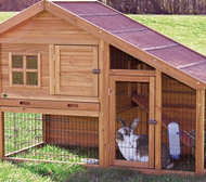 timber kennel